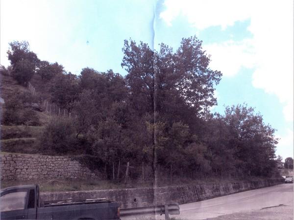 Foto n. 1 del terreno edificabile di Ucria