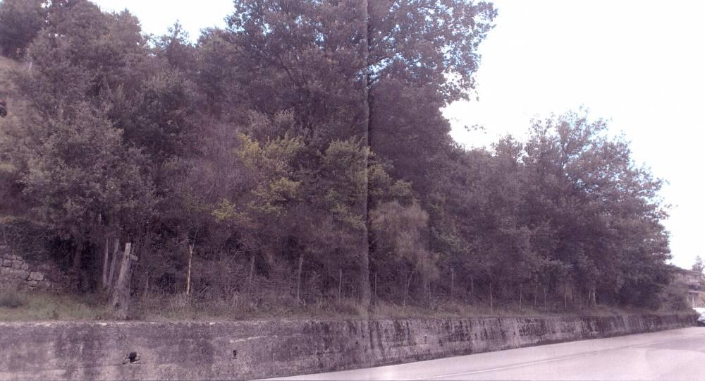 Foto n. 2 del terreno edificabile di Ucria