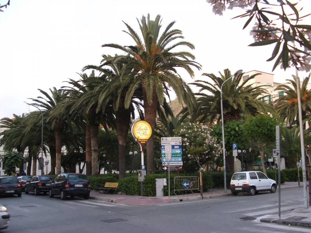 La villa nel centro della città (di fronte sede comunale).