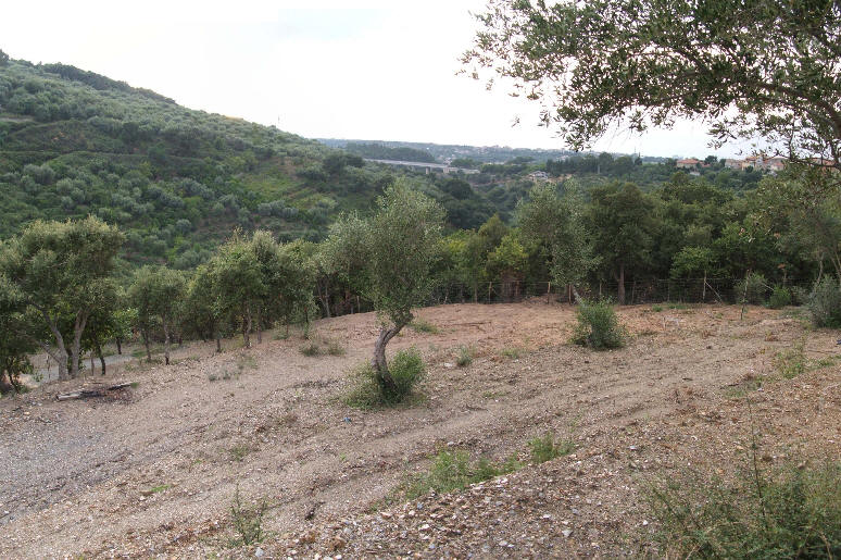 Foto 2 del terreno in vendita nel comune di Naso - Sicilia