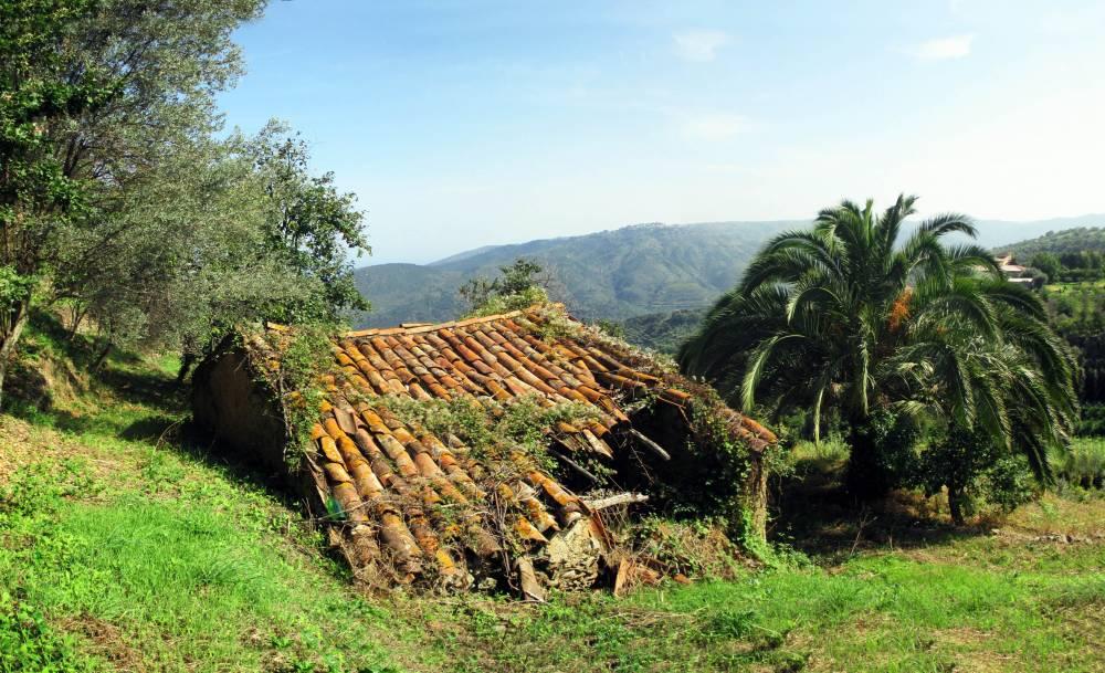 Foto 2 della vista terreno con rudere in vendita a Capri Leone - Sicilia