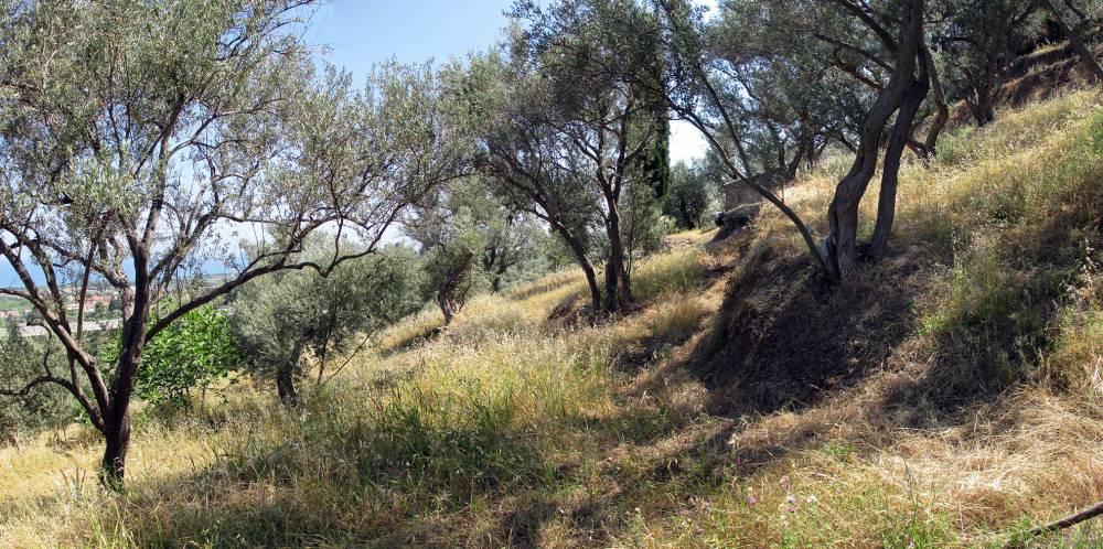 Foto 1 del terreno di San Marco d´Alunzio