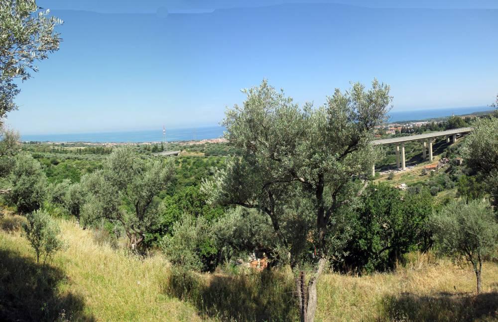 La vista panoramica dal terreno