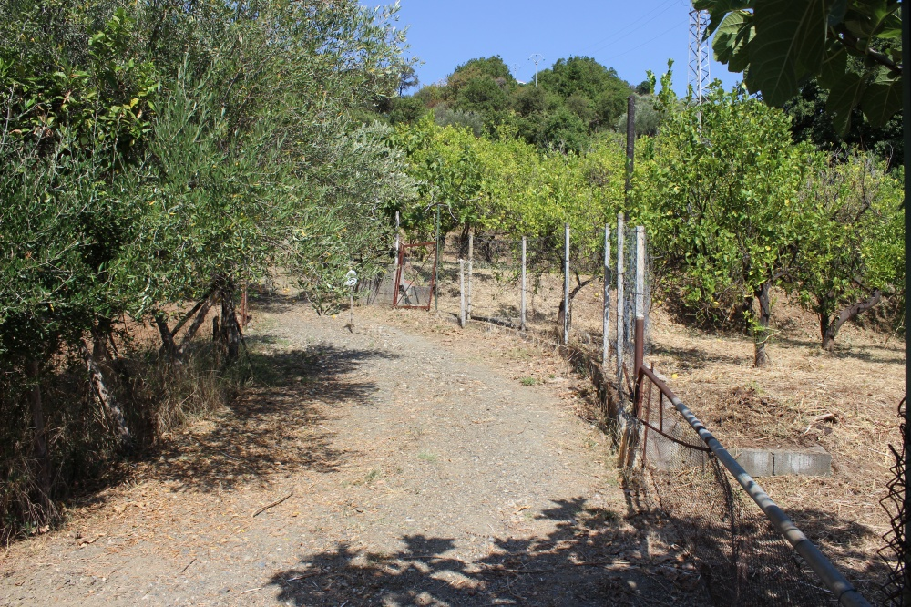 Foto 1 Terreno con fabbricato rustico nel comune di Naso - Sicilia