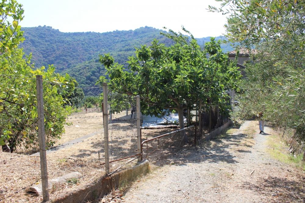 Foto 3 Terreno con fabbricato rustico nel comune di Naso - Sicilia