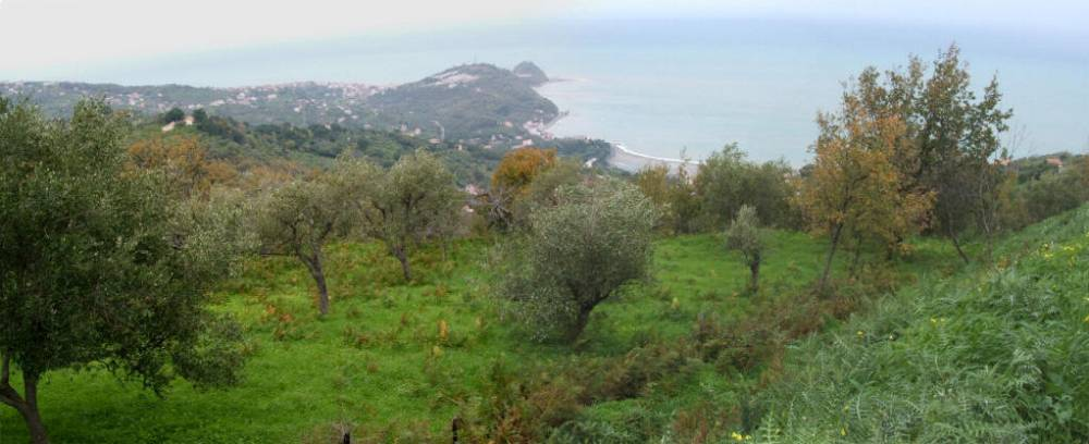 Terreno in vendita con vista sul mare su San Gregorio Naso - Sicilia